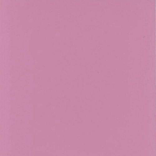 1950's Retro Corral Pink