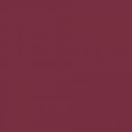 Florida State FSU Garnet Red