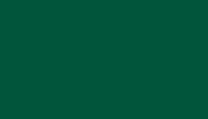 North DakotaState Bison Green
