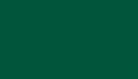 North DakotaState Bison Green